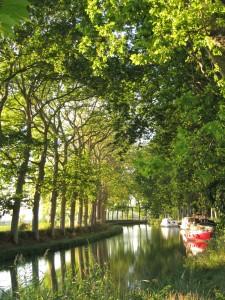 Canal du Midi - Aout 2011