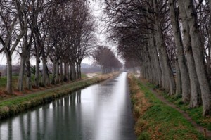 canal_384914_516x343