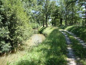 «Saint-Paulet (Aude, Fr) La Rigole de la Plaine» par Havang(nl) — Travail personnel. Sous licence CC0 via Wikimedia Commons.