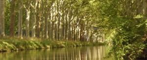 Canal-du-Midi-596x246