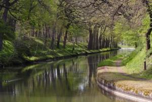 naurouze-canal-596x400