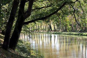 la-canal-du-midi-a-350-ans-aujourd-hui-jour-pour-jour_823006_516x343