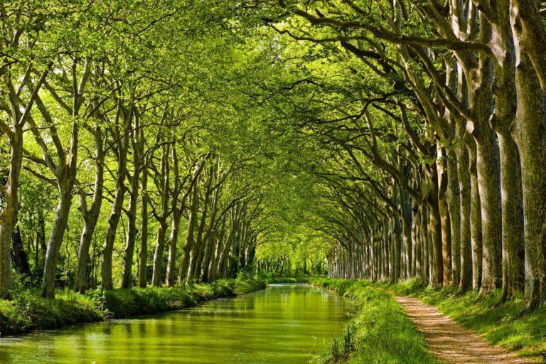Toulouse-Canal-du-Midi